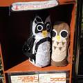 写真: ペンギン、フクロウ