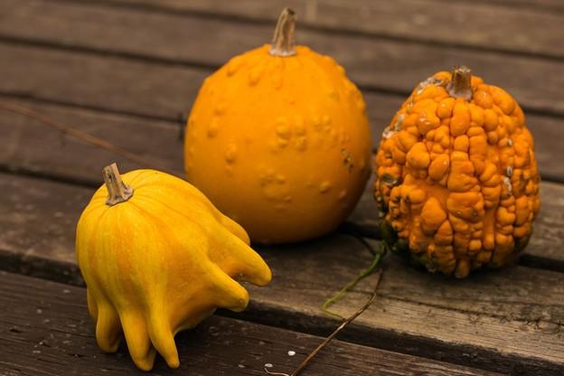 秋の顔 ~Even Halloween is a little more.~