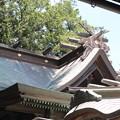 Photos: 28.7.12小牛田山神社本殿
