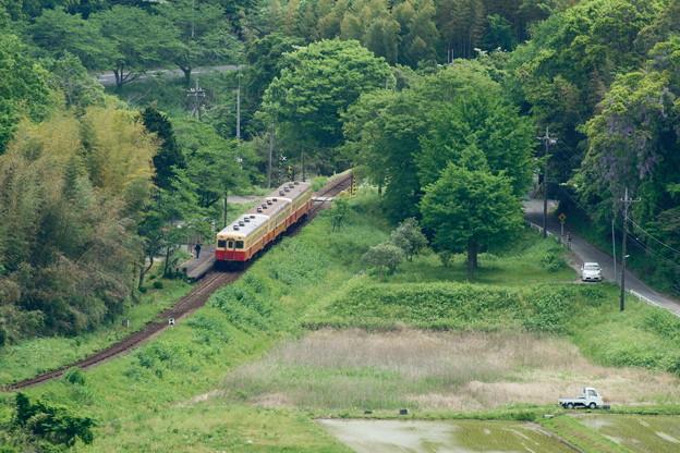 DSC02005(1)