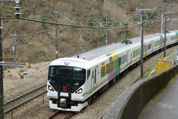 DSC08770(1)