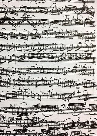 東京・中野・練馬・江古田、ヴァイオリン・ヴィオラ・音楽教室<br /> 表現