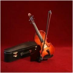 楽しく弾きたい人 東京・中野・練馬・江古田、ヴァイオリン・ヴィオラ・音楽教室