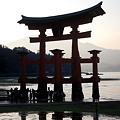 Photos: 宮島の嚴島神社の大鳥居です。