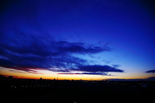 Photos: 寒い・・・