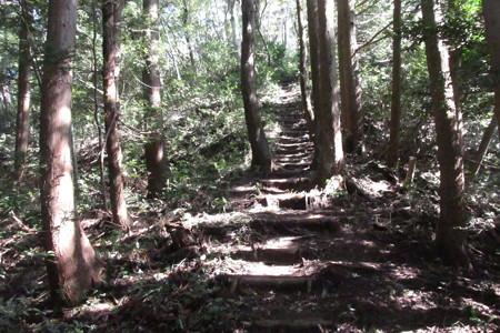 161007城ヶ平山 2