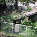 北浅川に架かる木の橋