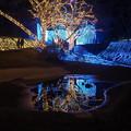 Photos: 冴ゆる夜