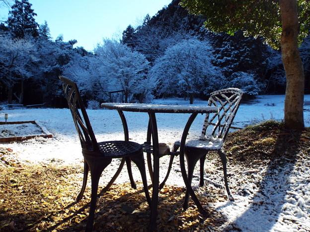 雪晴れの朝に