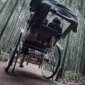 写真: 竹林と人力車