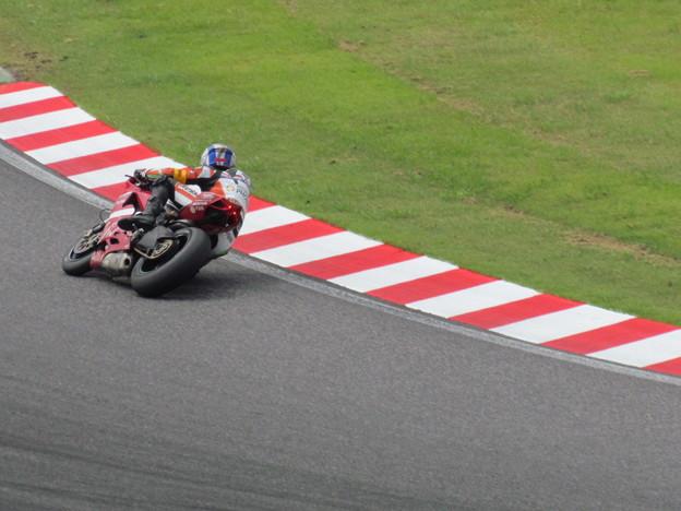 写真: 2014 鈴鹿8耐 スガイレーシングジャパン 須貝義行 蒲谷朋大 ドゥカティ 1199パニガーレR 742