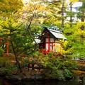 写真: 秋の白石神社.6