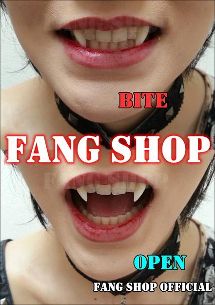 fang shop 付け牙 n 2043 trang chia sẻ ảnh photozou